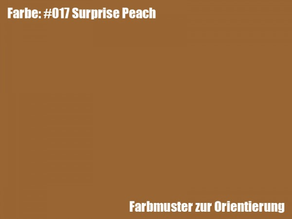 Rosco Farbfolie -Surprise Peach #017